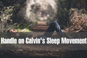 PICTORIAL: How We're Trying To Get a Handle on Calvin's Sleep Movement
